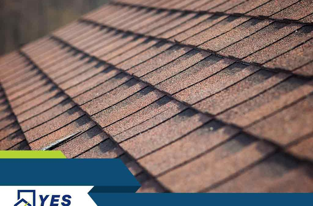 Maintenance Tips to Extend Your Roofing System's Life Span